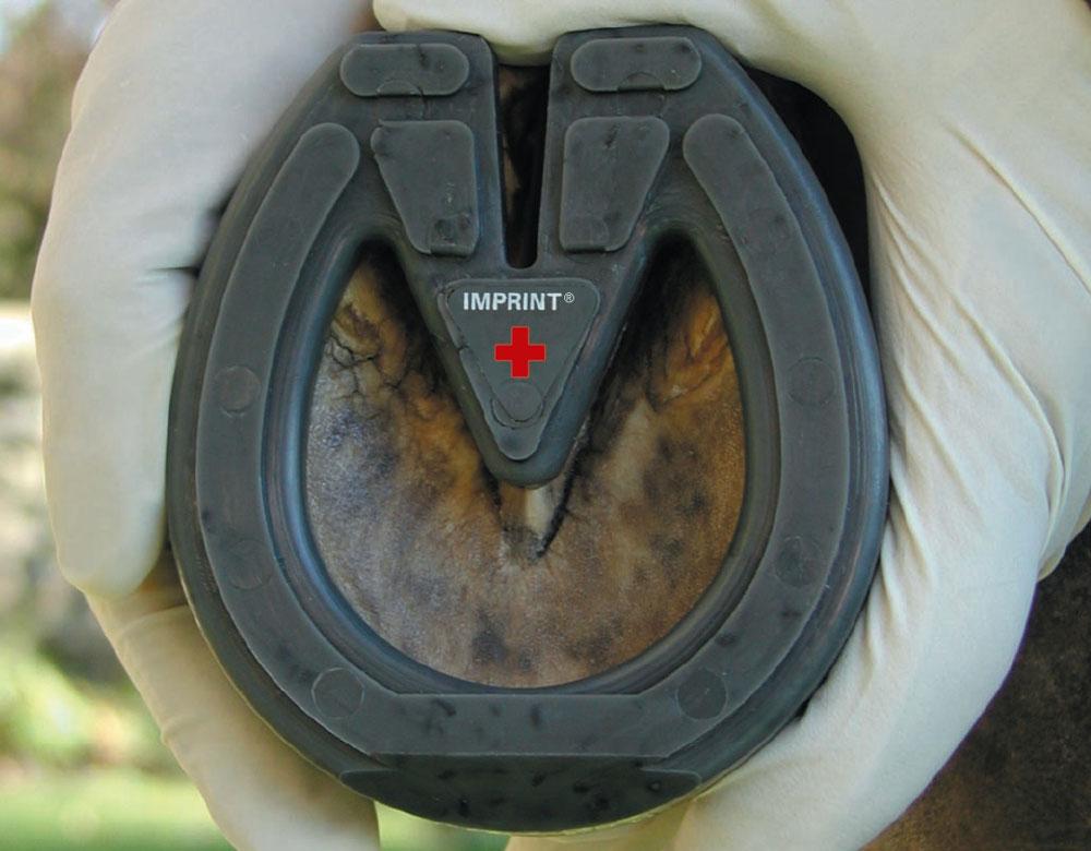Imprint Plus Shoe